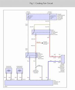 45 Awesome Thermo Fan Wiring Diagram