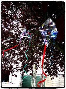 Pinterest Bricolage Jardin : des cerfs volants pour d corer le jardin bricolages d ~ Melissatoandfro.com Idées de Décoration