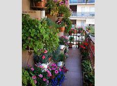 Balcony Garden Design Ideas My Daily Magazine Art