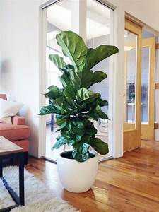 35 Chic Ways To Rock Plants In Your Interiors - DigsDigs