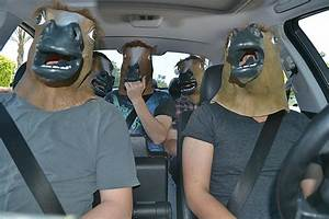 Funny Horse Head Mask - FunnyMadWorld