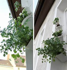Hängende Pflanzen Für Draußen : eine h ngende osterdeko f r drau en heute von ~ Sanjose-hotels-ca.com Haus und Dekorationen