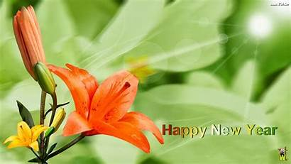 Flowers Flower Wishes Wallpapers Gifts Happy Cards