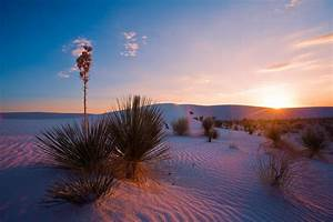 Photography Guide to White Sands National Monument