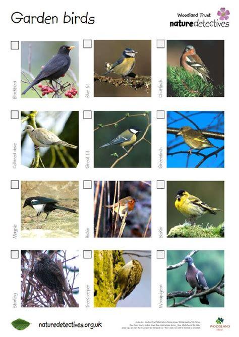 bird spotter sheets a helpful checklist and images of 919   4be4e5b538f6b2de66e0e18cff581f66