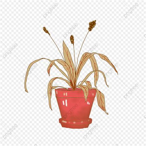 วัสดุที่ทาสีด้วยมือเหี่ยวพืชต้นล่างโปร่งใสองค์ประกอบเชิง ...