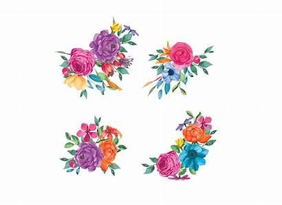 Floral Clipart Watercolor Fiesta Colorful Flowers Transparent