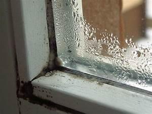 Schwarzer Schimmel Fenster : schimmel im wohnraum ~ Whattoseeinmadrid.com Haus und Dekorationen