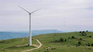 Striking The Right Balance Between Wind Energy And