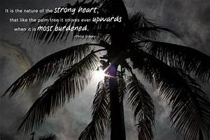 The lesson of t... Inspiring Palm Tree Quotes
