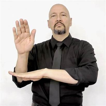 Afternoon Language American Asl Hold Signs Gifs