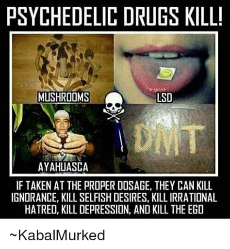 Psychedelic Meme - psychedelic drugs kill mushrooms lsd ayahuasca if taken at the proper dosage they can kill