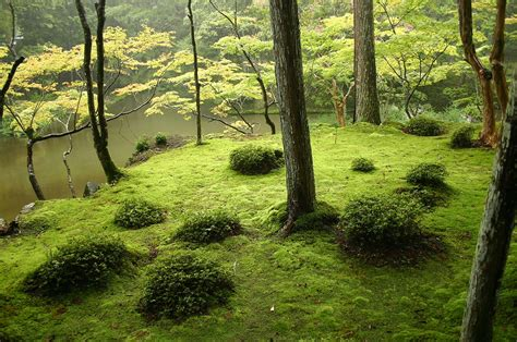 japan zen inspiring gardens japanese most kyoto