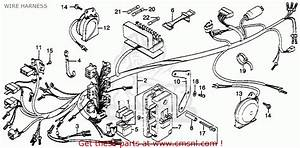1986 Honda Goldwing 1200 Wiring Diagram  Honda  Wiring