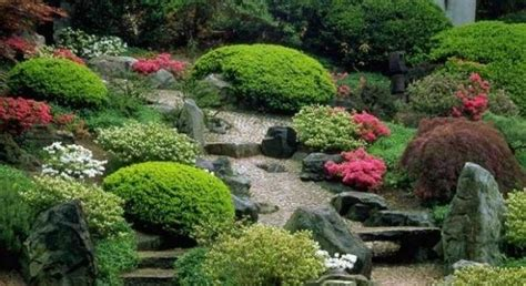 Asia Garten Pflanzen by 16 Schritte Japanischen Garten Gestalten Pflanzenarten