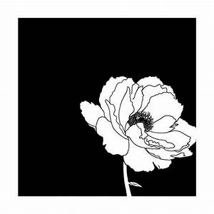 Black and White Print with Large White Flower Prints at ...