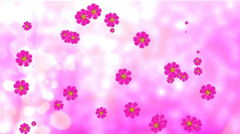 Pink Animated Wallpaper - pink flowers background 183