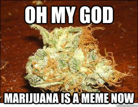 Marijuana Memes - oh my god marijuana is a meme now