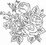 Roses Adults Coloring Pages Printable Flower Flowers Everfreecoloring sketch template
