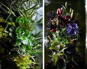 bouquets de fleurs exotiques dans des blocs de glace par With affiche chambre bébé avec fleur exotique bouquet