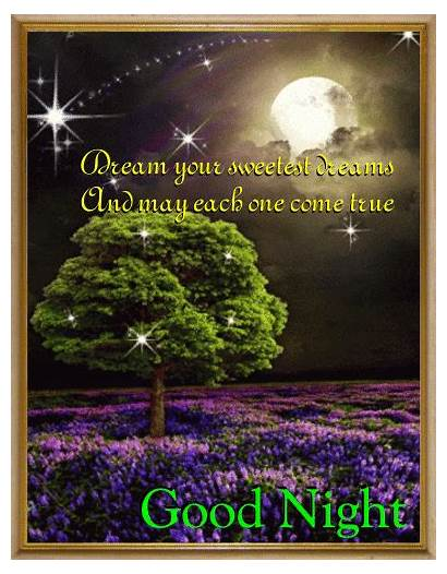 Dreams Night Sweet Goodnight Sweetest Quotes Card