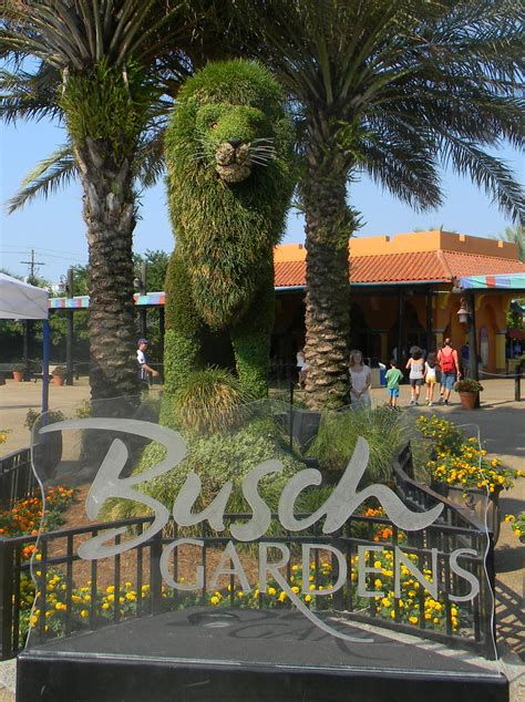 bush gardens florida the quot unknown quot florida busch gardens ta fl