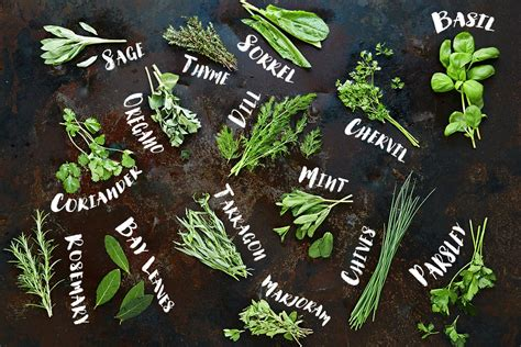 how to herbs how to use herbs jamie oliver features