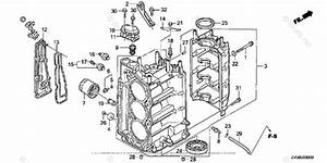 Wiring Diagram  34 Honda Outboard Parts Diagram Online