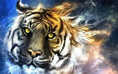Creative Tiger Face Graphics Animal Fantasy Abstract