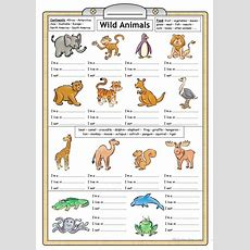 Wild Animals  Reading & Writing Worksheet Worksheet  Free Esl Printable Worksheets Made By
