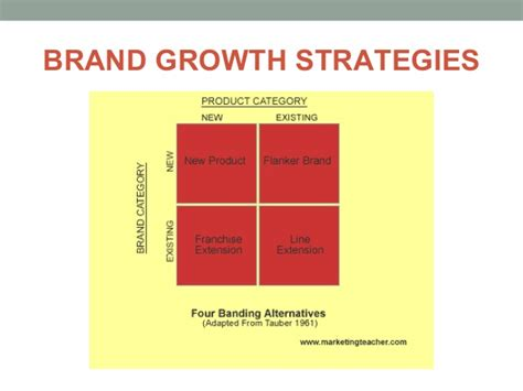 Product & Service Strategy & Brand Management