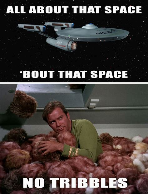 Space Meme - because i m all about that space no tribbles star trek meme star trek and trek
