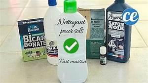Laver Chien Savon Noir : le nettoyant fait maison pour sols qui limine 95 des bact ries ~ Melissatoandfro.com Idées de Décoration
