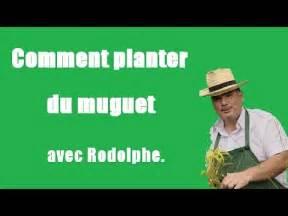 Comment Planter Du Muguet : comment planter du muguet tuto vid o jardinage le jardin de rodolphe youtube ~ Melissatoandfro.com Idées de Décoration