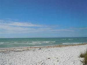 honeymoon island state park the perfect january destination With honeymoon island state park