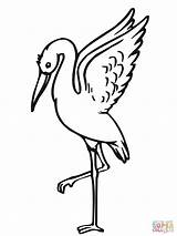 Stork Coloring Storks Clipart Taking Printable Clipartbest Xxx Popular Coloringhome sketch template