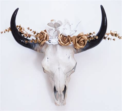 Decorated Cow Skulls Australia by Cow Skull Animal Skull Skull Taxidermy Skull Bison