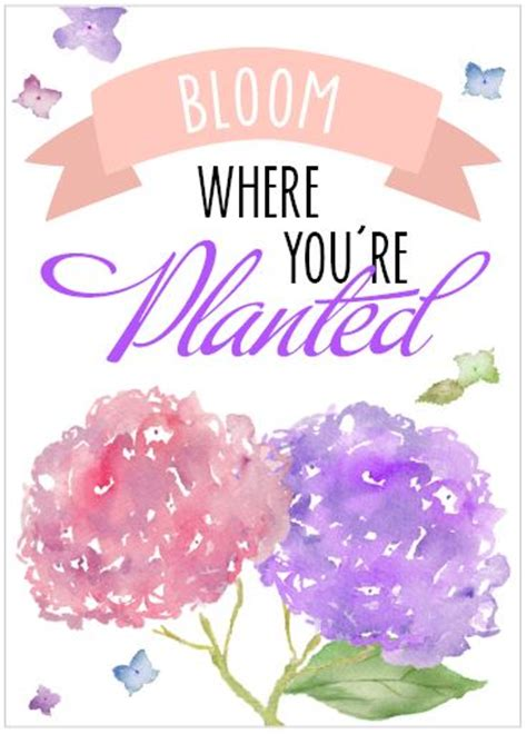 Are you searching for bloom where you are planted png images or vector? Free Spring Printable - The Hamby Home