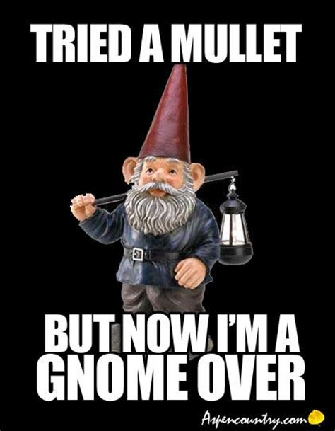 Gnome Meme - 11 best gnome you di nt images on pinterest garden gnomes funny gnomes and garden art