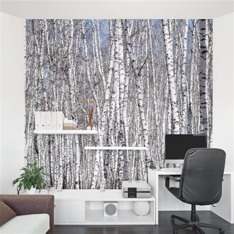 wall to wall murals white birch trees wall mural
