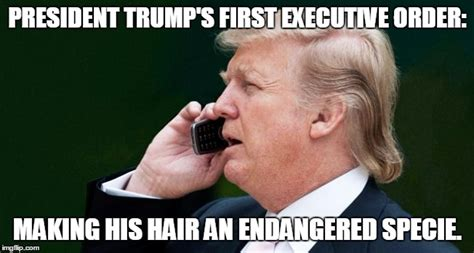 Trump Hair Memes - the funniest donald trump memes from across the internet wow amazing