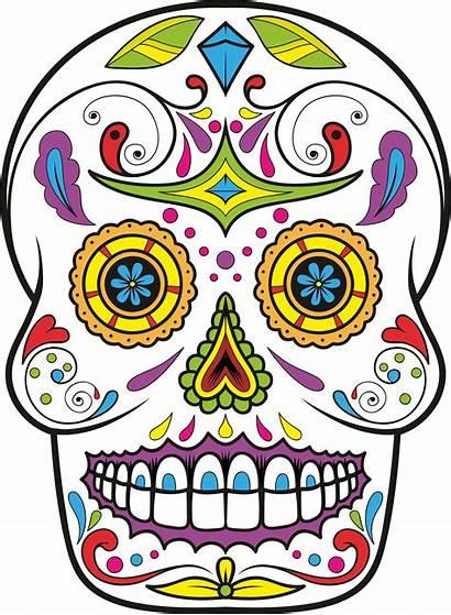 Skull Sugar Dead Clipart Skulls Clip Drawing