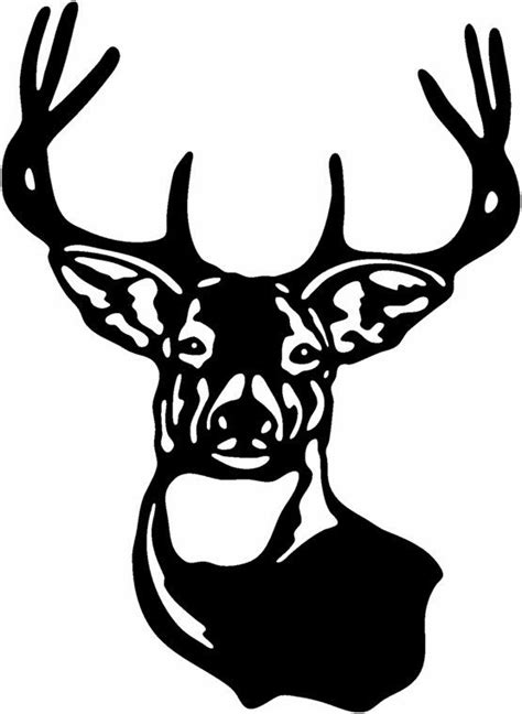 deer species clipart clipground