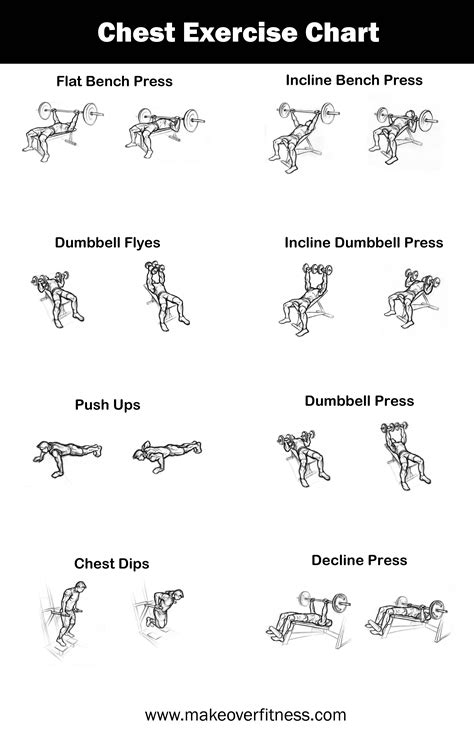 chest workouts health  fitness training