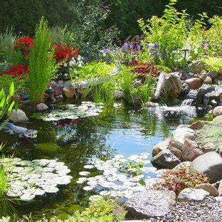 garden pond waterfall houzz