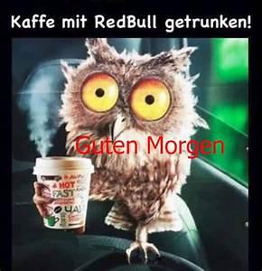 Lustige Guten Morgen Kaffee Bilder : hallo und guten morgen du hast heute geburtag coole und lustige bilder ~ Frokenaadalensverden.com Haus und Dekorationen