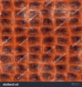 Alligator Skin Seamless Texture Stock Photo 74536180 ...