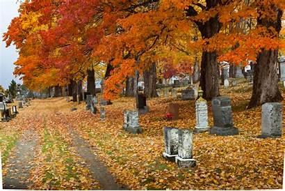 Fall Season Maine Seasons Autumn Natural Jooinn