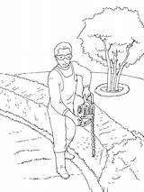 Gardener Pruning Cedars Coloring Printable sketch template