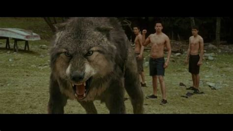 transformation jacob  wolf  twilight saga